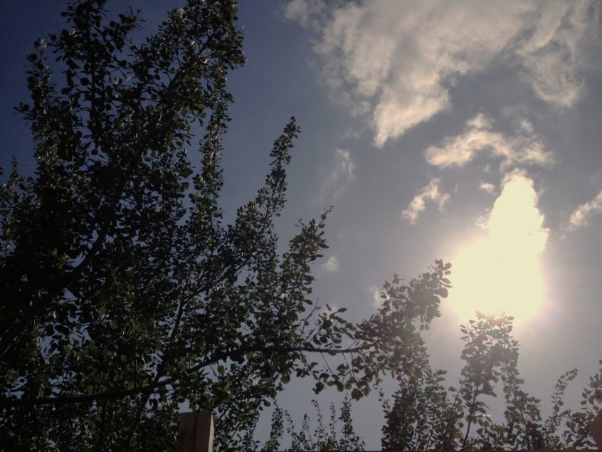 sky_8927